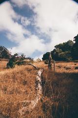 2015_MH-AngelIsland-5207 (sneaks n beats) Tags: sanfrancisco camping angel island bay area mountainhardwear
