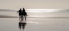 Riders Merthyr Mawr (Jimmer2003) Tags: nikon d5100 85mm silhouette beach horses merthyr mawr