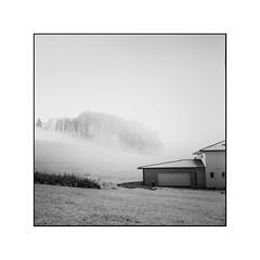 Frozen garage (cardijo) Tags: austria österreich salzburg landscape landschaft fog nebel winter schnee snow blackandwhite bw sw schwarzweis analog film fp4 rodinal rolleiflex tessar carlzeiss nikon coolscan