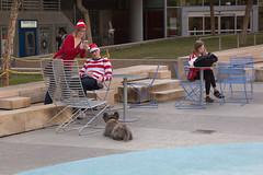 1612 Where's Waldo flashmob43 (nooccar) Tags: dtphx 1612 improvaz dec2016 nooccar cityscape devonchristopheradams whereswaldo contactmeforusage devoncadams dontstealart flashmob photobydevonchristopheradams