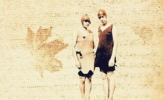Days of Autumn (WatermelonHenry) Tags: autumn leaf days sepia bathing costume swimming canada ladies 2 two paving stone