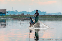 Traditional Fishing at the U-Bein Bridge at Sunrise in Mandalay, Myanmar (AnthonyGurr) Tags: burma myanmar anthonygurr ubein bridge sunrise mandalay clouds water waterreflection reflection lowsun earlymorning scattered wooden traditional local fishing boat fisherman net catch taungthamanlake