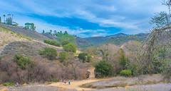 Trail on the way to paradise falls (MrSaha) Tags: trail way paradise falls nikon d52000 dslr panaromic tall wide nature landscape manual earth top bright dim shadow light around view look travel happy life lively adventure globe world lonely peace peaceful calm quiet moment sharp clear soft beautiful capture red blue green color colors vivid vibrant legend day sun sunny sky cloud clouds hill mountain rocky rock tree leaves branches plants flower root grass hay