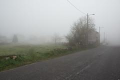 Cold days (Testigo Indirecto) Tags: fog foggy lugo quiet empty emptyspace road rural niebla vacio espaciovacio carretera carreteraperdida lost perdido nowhere tranquilidad cold frío frozen