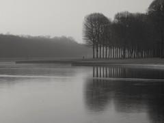 Frozen and foggy.. Gelé  et brumeux.. (alainpere407) Tags: alainpere parcduchateaudeversailles versailles gel frost froid cold glace ice vividstriking blackdiamond