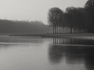 Frozen and foggy.. Gelé  et brumeux..