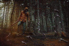 Survive. (Megan Glc Photographe) Tags: survive hands zombies walking dead trees walkingdead weapon apocalypse apocalyptic endoftheworld death horror scary fallout woods darkness dark light spores surreal movie cinematic retouch editing photoshop manipulation fantastic fantasy magicmoments