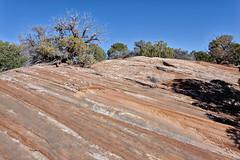 Stripes _2947 (hkoons) Tags: usa landscape utah nationalpark unitedstates desert canyon canyonlandsnationalpark np needles nationalparkservice mesa theneedles