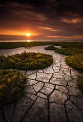 Global Warming (DBPhotographe) Tags: sunset mer david france canon sable paca lee sunburst provence filters sec paysage maries chaud saintes camargue etang 6d méditerranée boue canicule vaccarès bouscarle