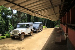 The fourwheeled Jeeps Dare Nature Wayanad
