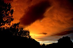 Skies Aflame (donjuanmon) Tags: blue trees sunset red sky orange black silhouette yellow clouds flame cliche hcs clichesaturday donjuanmon