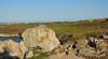 Rock on (Vee living life to the full) Tags: uk england wales flora may 2015 isleofanglesey nikond300 shootaboot shootaboot2