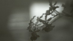 sombras 003 (Parchen) Tags: muro textura luz branco wall sombra preto cor sombras texturas parede nuances monocromtico suavidade transio parchen carlosparchen