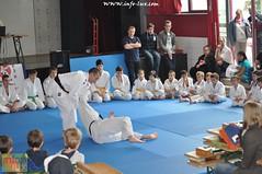 Judo-habay052