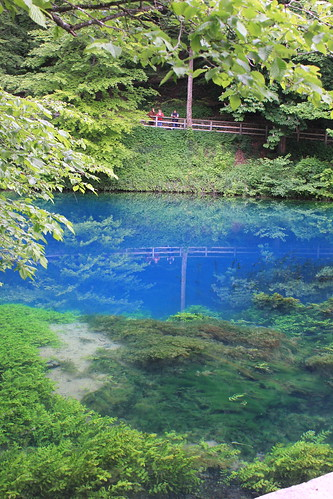 Source of the Blau