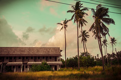 in a Tropical Mood (Manlio'77) Tags: plants building architecture palms relax landscape thailand nikon colorful asia mood blu turquoise perspective relaxing atmosphere tropical phuket vignetting turchese southasia rawai