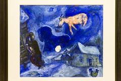 IMG_9214 (storvandre) Tags: art museum torino gallery arte modernart museo turin galleria moderna gam artemoderna storvandre