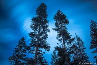 Yosemite - Drifting By - 5579 [Explore - Aug. 4, 2015]
