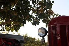 IMG_0374 (ACATCT) Tags: old españa tractor spain traktor agosto toledo antiguo massey pistacho tembleque barreiros 2015 bustards perdices liebres avutardas ff30ds r350s