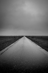Divided (http://www.paradoxdesign.nl) Tags: divided road horizon clouds fields rural tarmac eemnes netherlands holland polder lines vanishingpoint weather cold winter wet