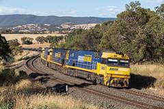 2017-01-18 Pacific National NR94-NR62-NR81 Brewongle 3YN2 (deanoj305) Tags: brewongle newsouthwales australia au pacific national steel link intermodal train nr94 nr62 nr81 main western line nsw 3yn2