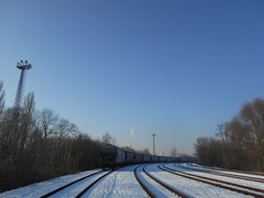 (streetzisill) Tags: 2017 yard transcereales freights fr8s freight fr8 train