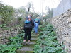 Italy - Liguria - Near Santa Margherita Ligure - Walking along path to Pietre Strette (JulesFoto) Tags: italy centrallondonoutdoorgroup clog ligure santamargheritaligure walking