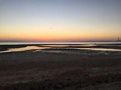 Neon near fareham sunset over Southampton water (muppets2muppets) Tags: southamptonwater sunset