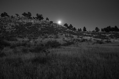 Moonrise, Maxwell Natural Area (Joseph Ridgway) Tags: moonrise moon colorado maxwellnaturalarea rotarypark fortcollins hiking supermoon
