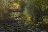 Puente (elsiete60) Tags: arroyo puente angostura río lozoya madrid panasonic dmcfz1000 bosquefinlandés elpaular rascafría