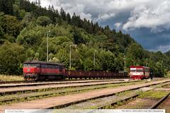 751.041-5 + 810.026-5 | trať 292 | Hanušovice (jirka.zapalka) Tags: trat292 cd stanice hanusovice rada751 rada810 train summer czech