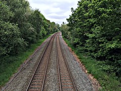 Train in the distance (Heaven`s Gate (John)) Tags: train distance line rail earlswood england perspective trees johndalkin heavensgatejohn railway landscape 10faves 50faves 100faves 150faves