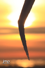 Sunset at St Joseph Lighthouse behind the ice! (Jeff Meeker) Tags: lakemichigan westmichigan winter winterwonderland weathered winterlife ice splash sparkle reflection reflections allthingsmichigan absolutemichigan artistic adventure slippery bluesky canon canont4i canondslr canon650d colorful clouds cloudsstormssunsetssunrises cold coldwater daylight day dangerousseas exploremichigan explore groupswithexperience interesting interestingness january 2017 lakeeffect michigan michigangottaluvit midwest michiganisamazing michiganlighthouses nature naturespaintbrush outdoorbeauty outdoorphotography outdoorphotographer outdoorphotos puremichigan photographersofwestmichigan peaceful quality southwestmichigan snow sunlight sunset stjosephmichigan stjoseph southhavenlighthouse southhaven southhavenpier thisisourmichigan themichigangallery theworldoutdoors vibrant texture newyearsadventures