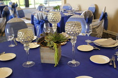 Succulent centerpiece (The Blooming Idea) Tags: centerpiece succulents woodenbox wedding woodlandsresort