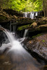Ricketts Glen State Park (Avisek Choudhury) Tags: waterfall pa gitzo rickettsglenstatepark nikond800 avisekchoudhury acratechballhead nikon1635mm avisekchoudhuryphotography