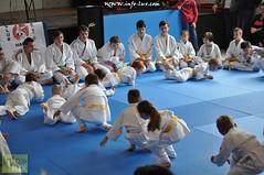 Judo-habay033