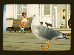 living by the sea (Mai Moonwall) Tags: life hair seagull sl mai second 7r moonwall uwst gizhair