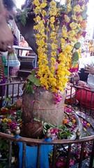 ancient-shivling (Stambheshwar Mahadev) Tags: ancient shivling mahadev shivlinga stambheshwar ancientshivling