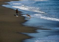 la spiaggia d'inverno (fotomie2009) Tags: beach winter spiaggia inverno mare sea savona liguria italia italy riviera ponente ligure battigia blue