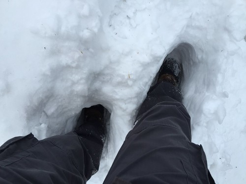 If it is snow, let it be deep👍❄️❄️❄️❄️😬 Low Section Personal Perspective Human Leg Winter Shoe Snow Human Body Part Lifestyles Cold Temperature One Person Real People Nature Outdoors Day One Man Only