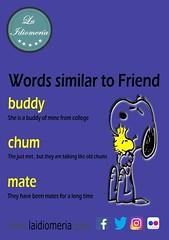 Do you need a pal?  #laidiomeria #friend #mate #pal #chum #buddy #comrade #english #school (laidiomeria) Tags: comrade mate english buddy school laidiomeria chum friend pal