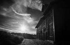(Tim Hösselbarth) Tags: leica m240 black forrest schwarzwald sunrise zeiss biogon 28