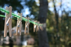 Pinned (FilmandFocusPhoto) Tags: canon sigma 1750 1750mm outdoors outdoor naturallight availablelight sunlight daylight sunshine clothespins clothesline green wood pins photoshopfree noprocessing untouched unedited noedit unaltered