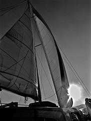 Summer Evening Sail On Lake Tahoe (sswj) Tags: bw leicadlux4 availablelight existinglight composition sailing sailboat sails evening sunset summer tahoe laketahoe sierranevadamountains scottjohnson mountainlight abstractreality water boat rigging marine lake
