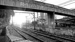 Urbano (Antonio Marin Jr) Tags: antoniomarinjr blackandwhite pb bw urbano trilhos