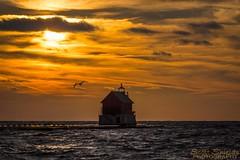 Grand Haven Sunset [explore] (Scott Shields Photo) Tags: lake michigan grand haven sunset seagull lighthouse 2016 november