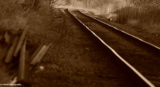 Staring southwards from Scarborough in sepia.