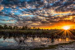 Watering Hole (Explored 2017.01.14) (DonMiller_ToGo) Tags: cloudporn sunsetmadness sunsets nature reflection birds goldenhour lake florida hdr wildlife 3xp onawalk sky sunsetsniper clouds d810 hdrphotography outdoors