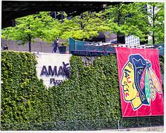 AMA Plaza and The Blackhawks (swanksalot) Tags: signs chicago hockey sign strangers ama blackhawks stanleycup americanmedicalassociation