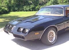 "1979 Pontiac Firebird • <a style=""font-size:0.8em;"" href=""http://www.flickr.com/photos/85572005@N00/18681307633/"" target=""_blank"">View on Flickr</a>"